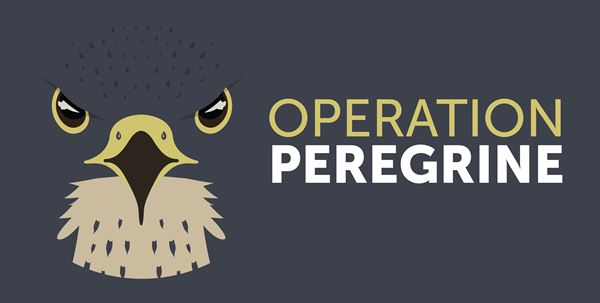 Operation Peregrine banner