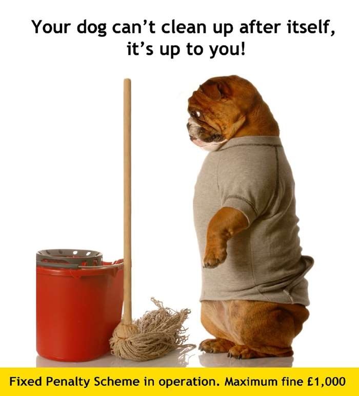 Your dog can't clean up after itself!